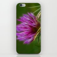 clover iPhone & iPod Skins featuring Clover by Best Light Images
