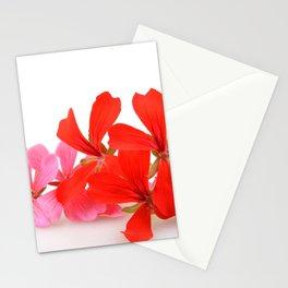 Geranium Pelargonium Flowers Stationery Cards