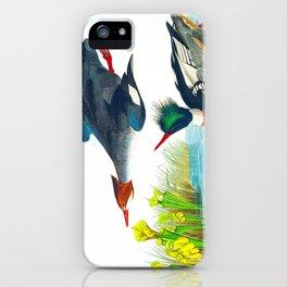 Red-breasted Merganser Bird iPhone Case