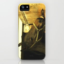 Iron lover iPhone Case