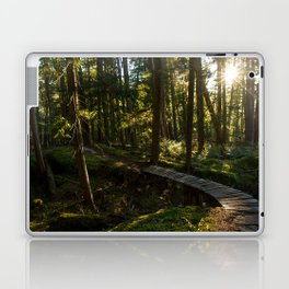 North Shore Trails in the Woods Laptop & iPad Skin