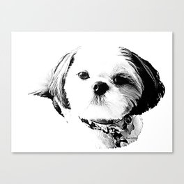 Shih Tzu In Black And White By Annie Zeno Canvas Print