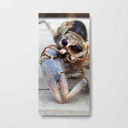 Haunting Crawfish Metal Print
