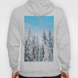 Snow covered evergreens Hoody
