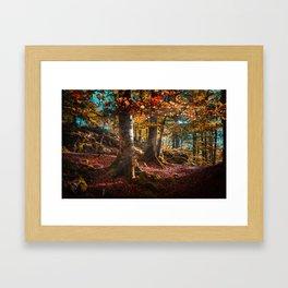 sunrise in the forest morning walk Framed Art Print