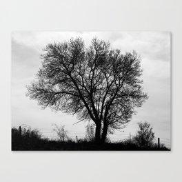 Nature shape Canvas Print