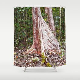 Buttress root in the rainforest Shower Curtain