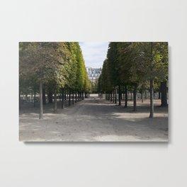 Tuileries Garden in the fall Metal Print