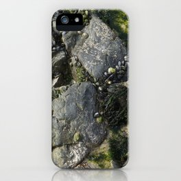 Beach Rock Pool with Seaweed and Barnacles iPhone Case