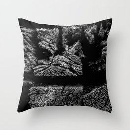 Railroad Ties Throw Pillow