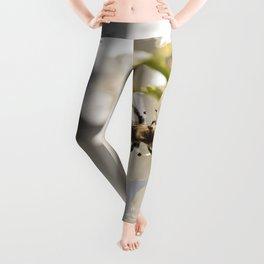 Spring Awakening  Leggings