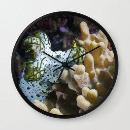 Gray Norse God Nudibranch Wall Clock