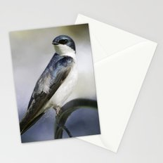 Tree Swallowtail Stationery Cards