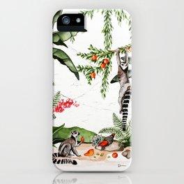 Ring-tailed lemurs of Madagascar .1 iPhone Case