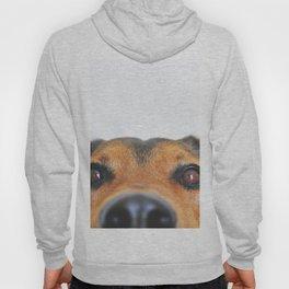 Dog looking at you Hoody
