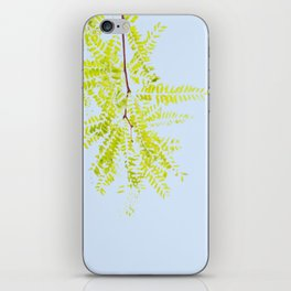 GRN/BLU iPhone Skin