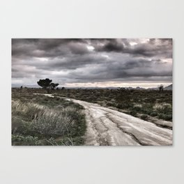 Potrero Creek Overcast Canvas Print
