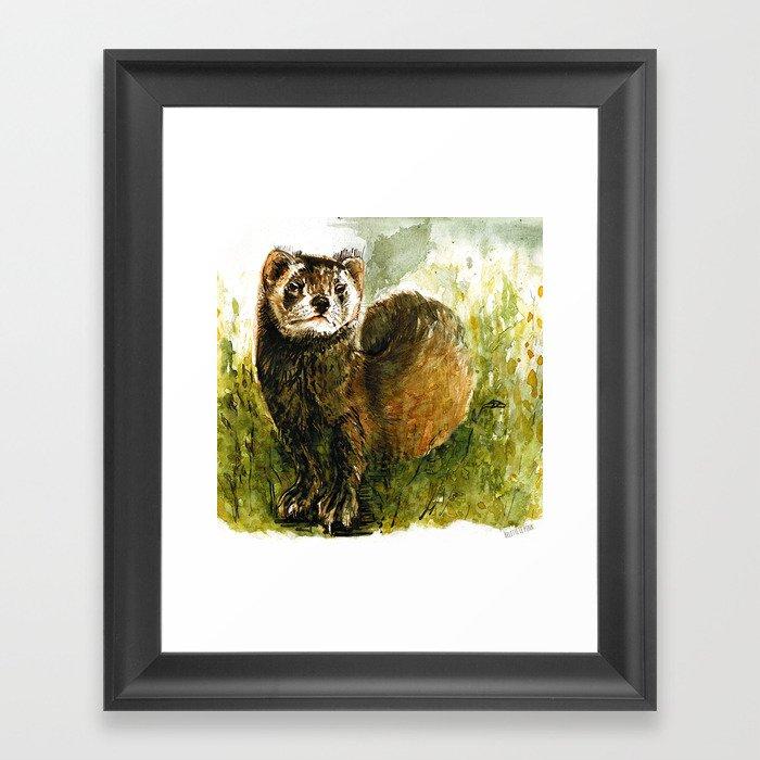Totem European Polecat Framed Art Print