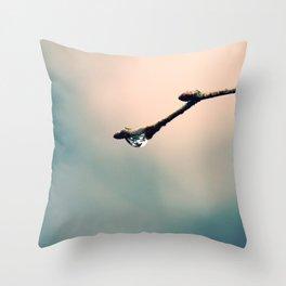 #31 Throw Pillow