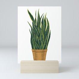 Snake Plant - Sansevieria Illustration  Mini Art Print