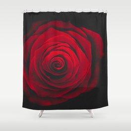 Red rose on black background vintage effect Shower Curtain