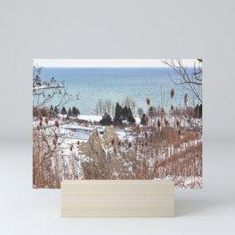 Scarborough Bluffs in Winter on December 27th, 2020. III Mini Art Print