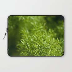 Prickly Laptop Sleeve