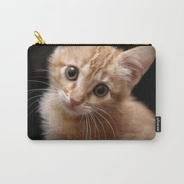 A Cute Kitten Looks Longingly at the Camera Carry-All Pouch