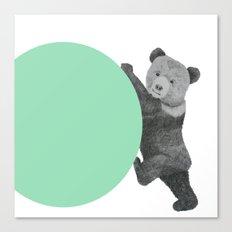 peppermint bear Canvas Print
