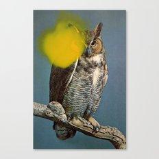 Untitled (Owl) Canvas Print