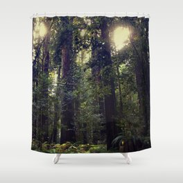 Sunrays in the Redwoods Shower Curtain