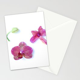 Orchid Life Cycle Stationery Cards