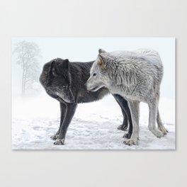 ebony and ivory   Canvas Print