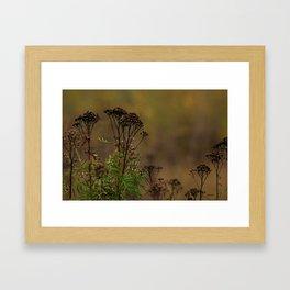 Dried rithm Framed Art Print