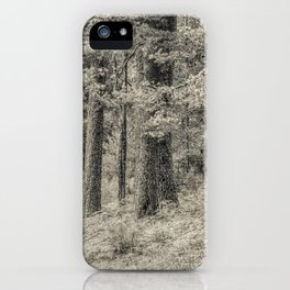 In the forest #5 iPhone Case