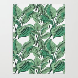 Exotic Tropical Banana Palm Leaf Print Poster
