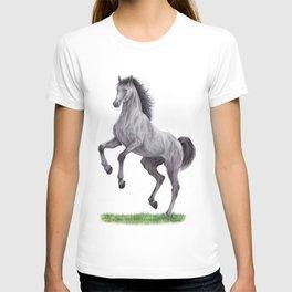 Horse colored pencil illustration T-shirt