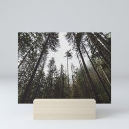 Pacific Northwest Forest Mini Art Print