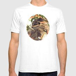 The Elusive Owl T-shirt