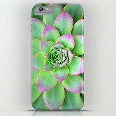 The Longest Bloom iPhone 6 Plus Slim Case