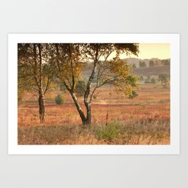 The tree and the morning Art Print