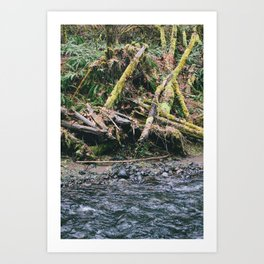 Oregon 6 Art Print