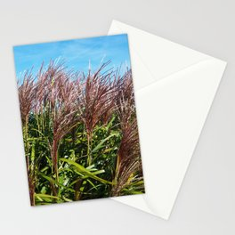 Chinese silver grass blowing in the breeze Stationery Cards