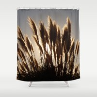 oakland Shower Curtains featuring Feathers by Olivier P.