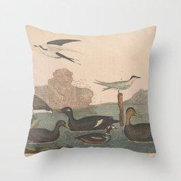 Brant Scoter Duck Velvet Duck Harlewuin Duck Ducky Duck Marsh Tern Sooty Tern13 Throw Pillow
