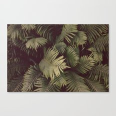 fern hands Canvas Print