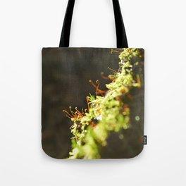 Mosepryd Tote Bag