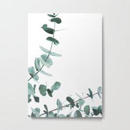 Turquoise Eucalyptus Metal Print