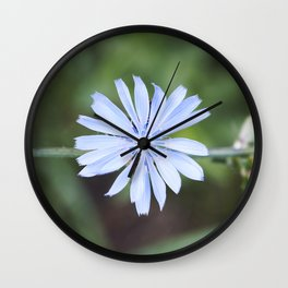 Blue Sow Thistle Wall Clock