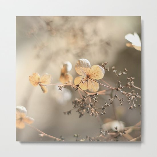 still beautiful °3 Metal Print